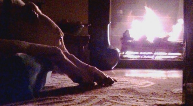 Finney in front of the fire
